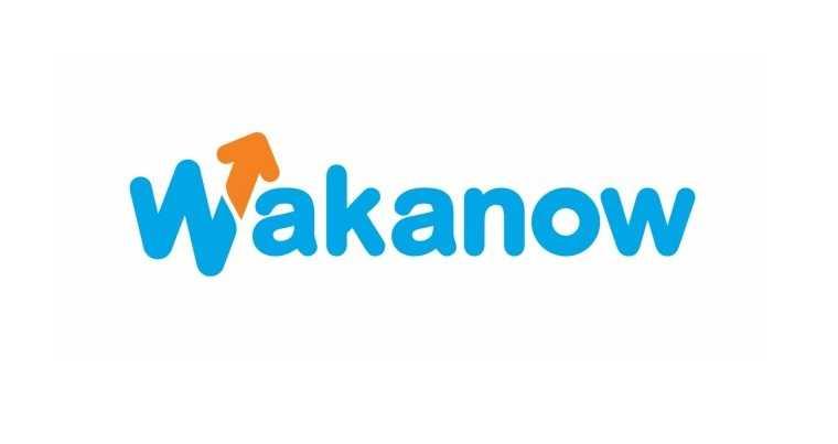 Wakanow Customer Care