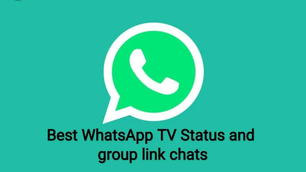 Best WhatsApp TV Status and group link chats